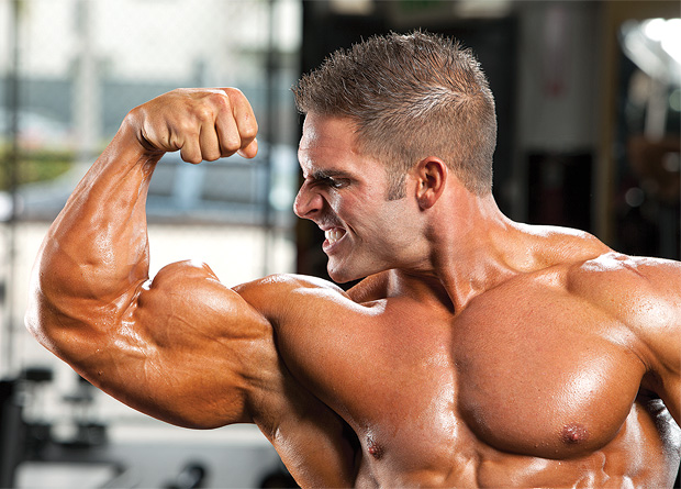 Mass Cycle Us Top Buy Steroids Online In Usa At Getanabolics